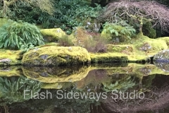 Japanese-Pond-Reflection-WMv2-